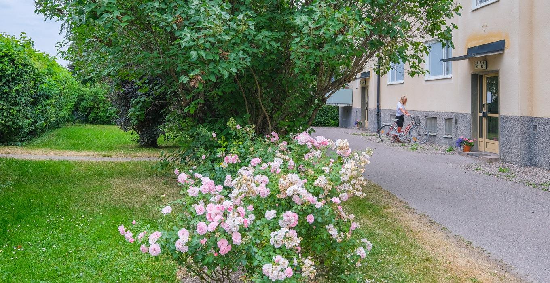 Brunnsgatan 51B_5