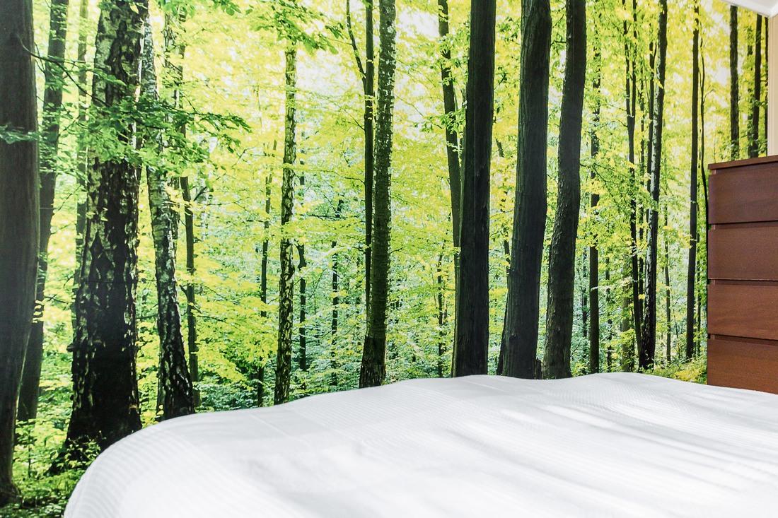 Vakna upp i skogen...