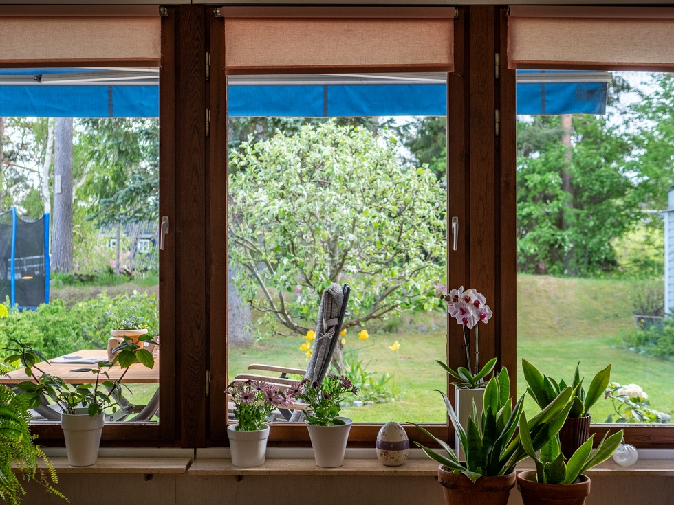 Stora fönster mot insynsskyddad baksida...